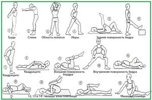Какие упражнения выполнять для растяжки