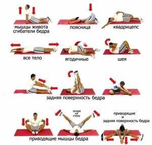 Какие упражнения растягивают мышцы