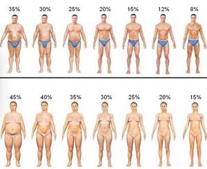 Нормальное содержание жира в организме женщины
