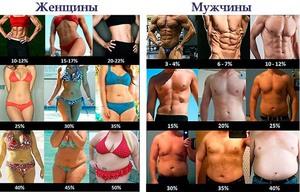 Жировая ткань и мужчин