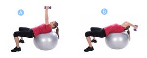 Техника выполнения упражнений на фитболе с гантелями