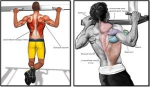 Как накачать все мышцы на турнике