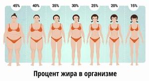 Как посчитать процент жира в организме калькулятор